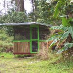 Front view of Bamboo Hut with garden lying around