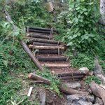 The old crater trail at Hedonisia