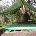 our old campsite in the jungle