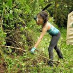 Eco-feminism Community in Hawaii