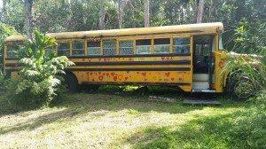 Aloha Bus Lodgings