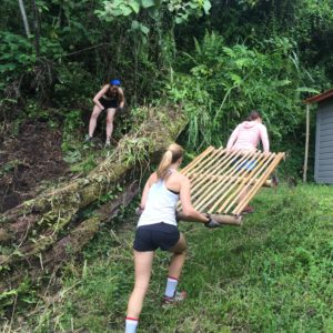 Volunteer in Hawaii - work trade