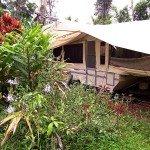 Ohia Camper Hawaii EcoHostel