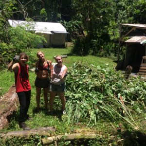 Pulling weeds and gardening in Puna