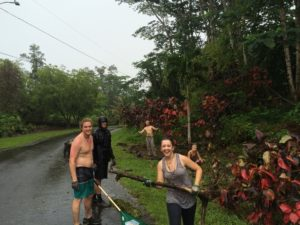 Rainforest Volunteers in Hawaii