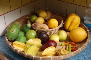 Fruits-of-Hedonisia-2011