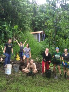 Interns and volunteers in Hawaii