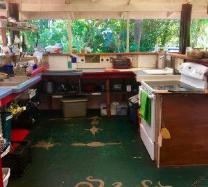 kitchen jungle stove
