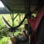 Tent Camping Hawaii Hammock