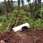 Car part left to to rot in the Hawaiian jungle