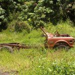 Hawaii jungle opala junkyard trash to treasure renaissance resurrection