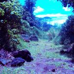 From Junkyard to Eco Hostel