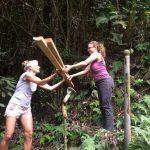 Jungle Queen Volunteers: Hawaii EcoTourism!