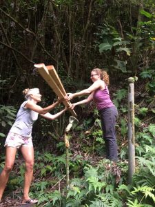 Jungle Queen Volunteers: Hawaii EcoTourism!