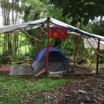 Rainforest Tent Camp
